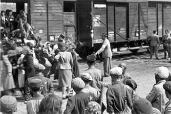 Правда о депортации чеченского и ингушского народов.jpg