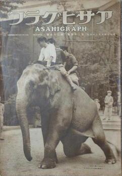 上野動物園 象の花子.jpg
