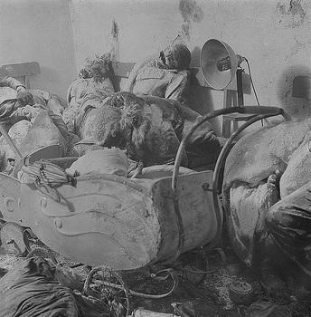 Eine Mutter über dem Kinderwagen ihrer Zwillinge im Tode erstarrt.JPG