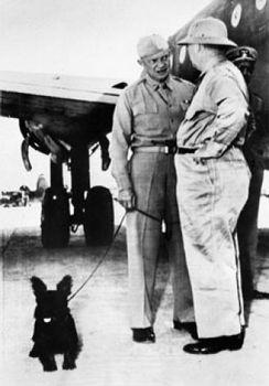 Eisenhower TELEK.jpg