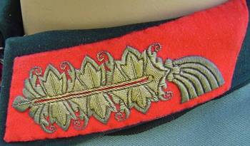 Generalfeldmarschall pattern collar tab in fine gold wire from the uniform of GFM von Manstein.jpg