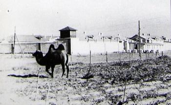 Kazakhstan camp.jpg