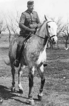 Manstein relaxing on his favourite horse, Osman.jpg