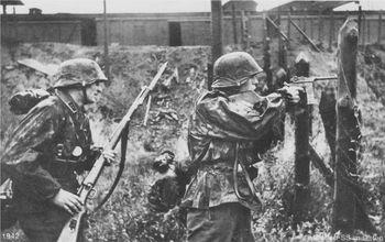 Mauser C96 Waffen-SS.jpg