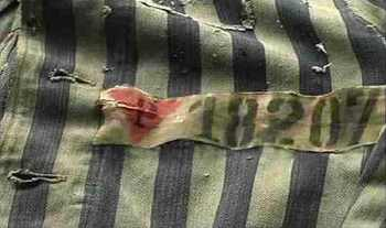 Nazi concentration camp badge.jpg