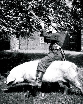 The-Wehrmacht-Pig.jpg