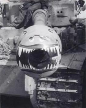 Tiger Tiger.jpg