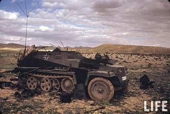Tunisia 1943 250.jpg