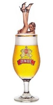 piwo-zywiec.jpg