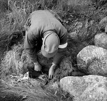 A German prisoner engaged in mine clearance duties near Stavanger unearths an anti-personnel mine.jpg