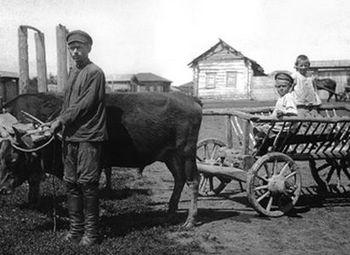 Кулак смертный и бесмертный 1920_1930.jpg
