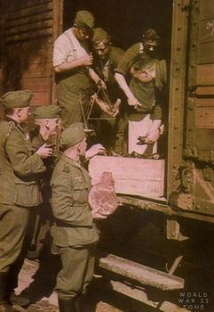 German troops picking up rations of fresh meat.jpg