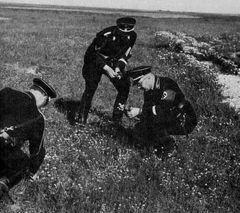 Heinrich Himmler picking flowers at Dachau.jpg