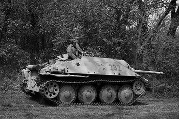 Jagdpanzer 38_ Hetzer.jpg