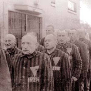 The Nazis forced gay men to wear pink triangles in concentration camps during World War II.jpg