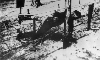 The body of Yakov Dzhugashvili on barbwire in Sachsenhausen concentration camp.jpg